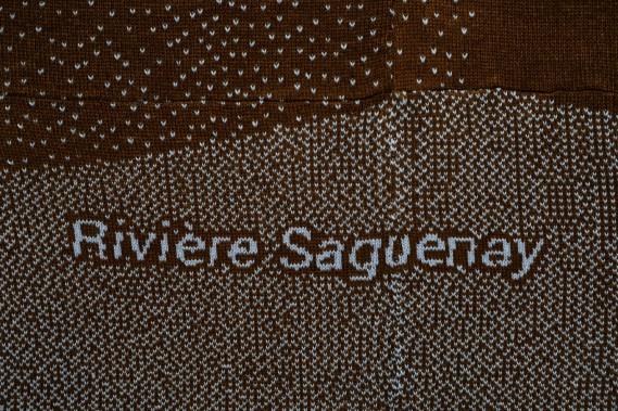 Un zoom sur <em>Rivière Saguenay</em>, où les mailles apparaissent comme des pixels. (Le Soleil, Caroline Grégoire)