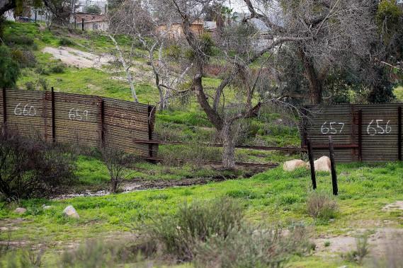 Près de Tecate, en Californie (AFP, Jim Watson)