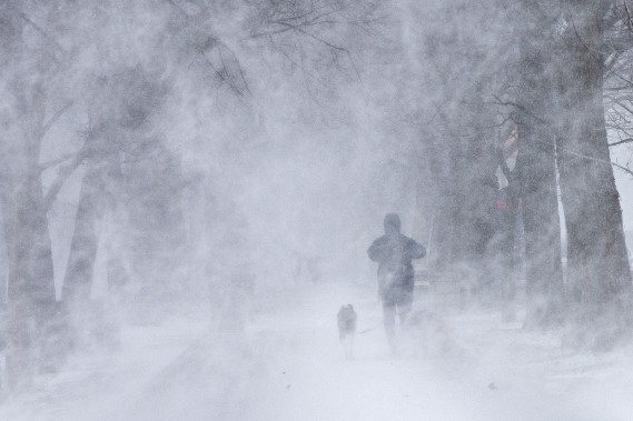 Environnement Canada a émis une série d'avertissements de neige abondante, de poudrerie et de tempête hivernale pour le sud du Québec. (Photo Patrick Sanfaçon, La Presse)