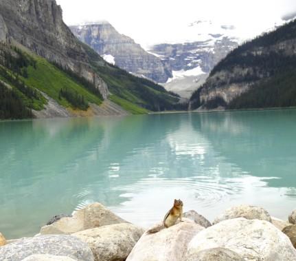 Le Bow Lake (Collaboration spéciale Normand Provencher)