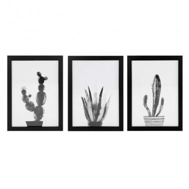 Rose.bon.bon - Ensemble de trois cadres cactus noirs et blancs. <br />Dimensions: 10 po X 14 po ()