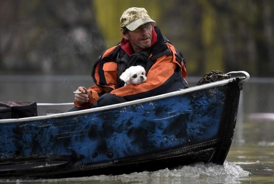 Un homme avec son petit chien, à Gatineau. (La Presse canadienne, Justin Tang)