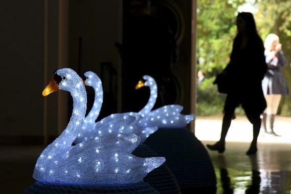<em>Ò Swan Song: Now Ó</em>, de la Tchèque Jana Zelinska (AFP, Vincenzo Pinto)