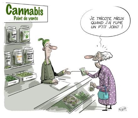 Caricature du 13 juin (Le Soleil, André-Philippe Côté)
