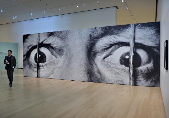 Le maître photographe du XX<sup>e</sup>siècle, Philippe Halsman, a exploité les portraits d'artistes comme Dali. (Le Soleil, Patrice Laroche)