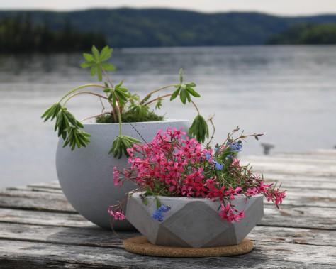 Pots à fleurs, intérieur ou extérieur. (Béton Multi Surfaces)