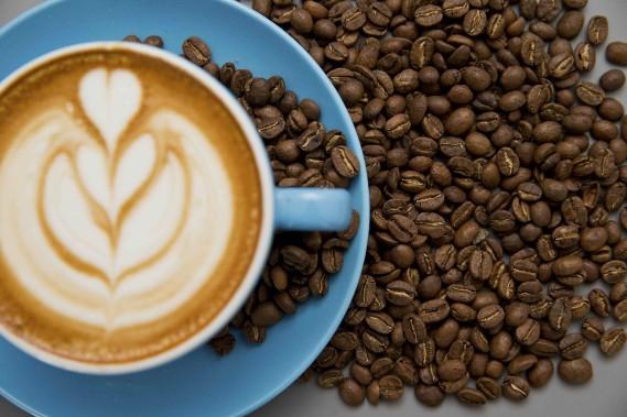 projet cafe-07.JPG