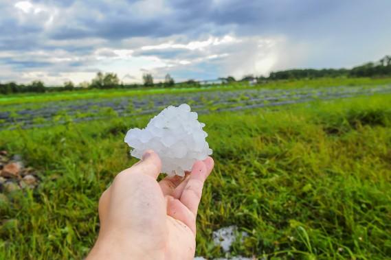 Des grêlons d'un diamètre de 2 à 3,5 centimètres ont été observés au Lac-Saint-Jean. (Le Progrès, Gimmy Desbiens)