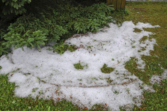 Des accumulations de grêle étaient visibles sur les terrains, plusieurs heures après la tempête. (Le Progrès, Gimmy Desbiens)