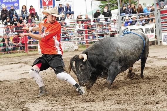 Les cornes des taureaux passaient bien près des compétiteurs... (Gimmy Desbiens)