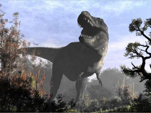 <strong>Un tyrannosaure. </strong>Selon les paléontologues, un gros mâle fâché pesait 18 000 kg de muscle, de dents et de cruauté. Mais si vous attirez un jeune de 15422 kg sur votre remorque avec un steak ou deux, vous êtes en voiture. Barrez vos portes. ()