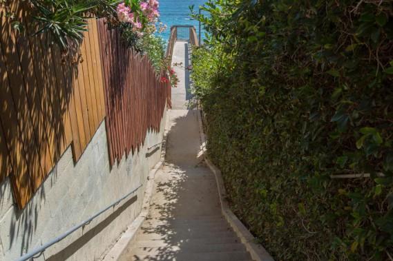 La marche des «Pacific Palisades» commence près de la plage de Malibu et trace son chemin sinueux, composé d'escaliers et de petites routes, à travers un quartier cossu, à flanc de colline. (PHOTO OLIVIER JEAN, LA PRESSE)