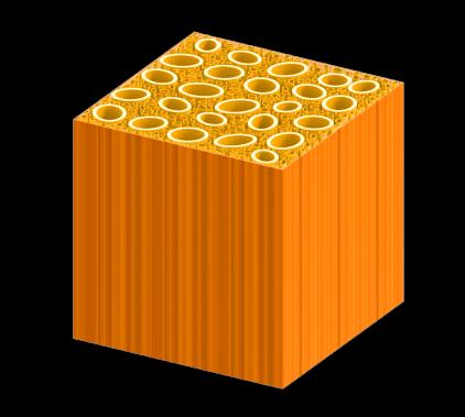 Représentation du bois après son traitementdans une solution bouillante d'hydroxyde de sodium et de sulfite de sodium. ()