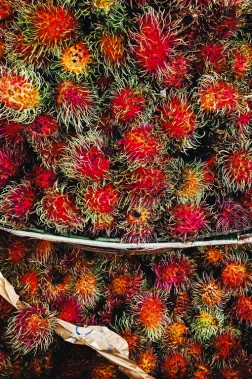 Le fruit du ramboutan rappelle celui du litchi. On les pèle d'ailleurs de la même façon. (Photo Christelle Tanielian, collaboration spéciale)