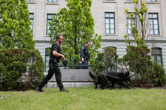 Un peu avant 15h, des policiers épaulés de chiens pisteurs faisaient une ronde autour du parlement. (PHOTO MARTIN TREMBLAY, LA PRESSE)