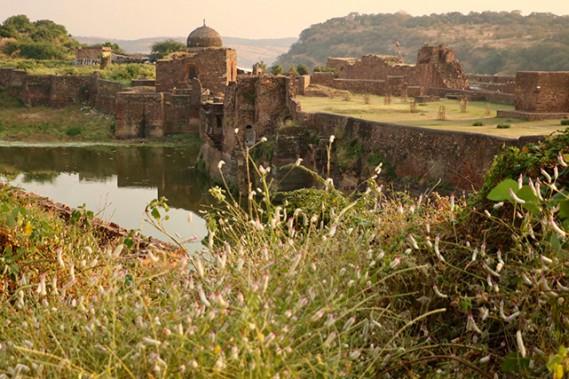 Ruines du fort de Rathambore: on y trouve une colonie de singes et un temple très fréquenté. (Crédit photo Chantal Lapointe)