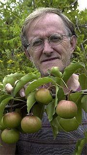 a9ea8af35c7 Des poires japonaises dans votre jardin