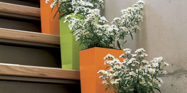 Ces cache-pots orange et vert lime sont munis d'un système... (Photo fournie par Alphaplantes)