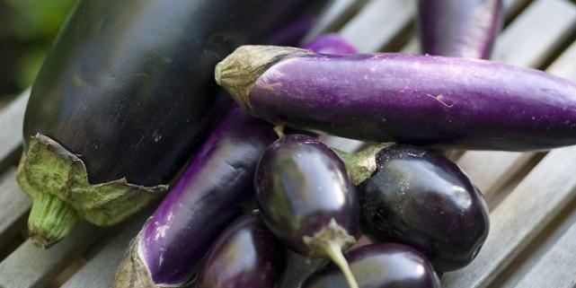Il existe une vaste gamme d'aubergines et de... (Photo François Roy, La Presse)