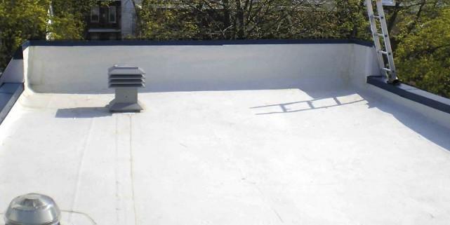 un toit blanc pour le prix et pour l 39 environnement yves perrier collaboration sp ciale. Black Bedroom Furniture Sets. Home Design Ideas