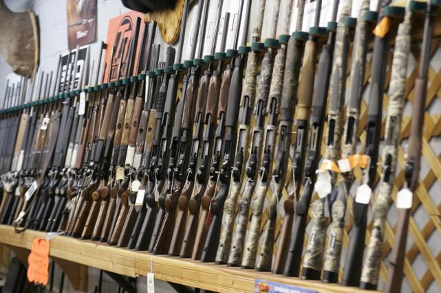 Reproduire un registre québécois des armes à feu... (Archives La Presse Canadienne)