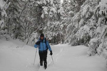 Dans le parc national de la Gaspésie, l'hiver... (Photo: founie par la SEPAQ)