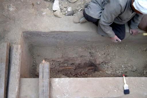 Les restes momifiés de ce qui pourrait être... (Photo: AFP)