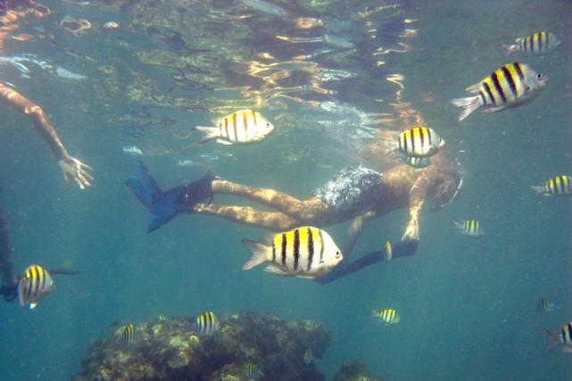 Saint-Martin, dans les Antilles.... (Photo: Alain Roberge, La Presse)