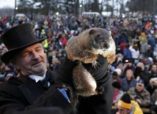 John Griffiths, soigneur de la célèbre marmotte qui... (AP)
