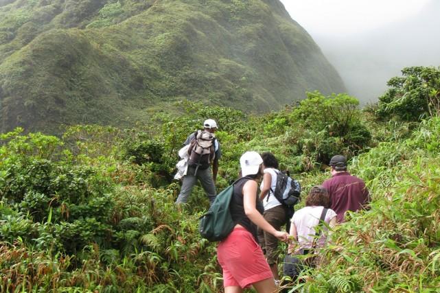 On peut gravir sans encombre la montagne Pelée,... (Photo: Éric Clément, La Presse)
