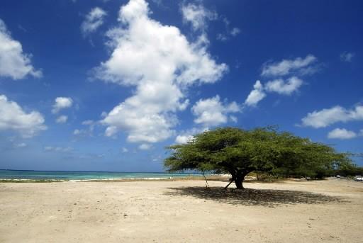 Conquest Vacations a annoncé mercredi la fin de ses activités, une décision qui... (Photo: Associated Press)