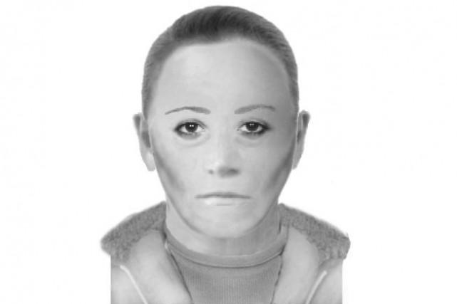 Les policiers ont publié un portrait de la...