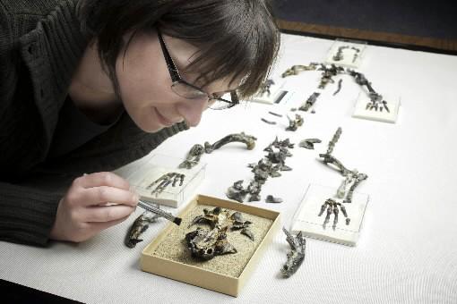 Natalia Rybczyski, du Musée canadien de la nature,... (Photo: Reuters)