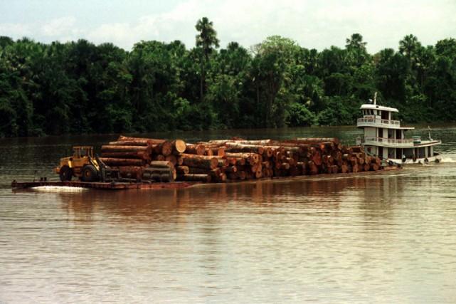 Le fleuve Amazone, au Brésil.... (Photo: AP)