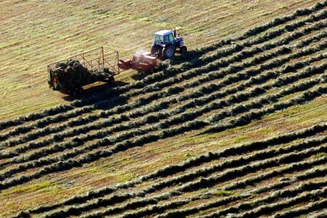 Le rapport sur l'aide de l'État en agriculture... (Archives La Presse)