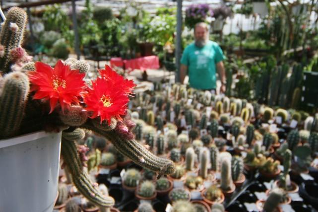 Le Centre d'interprétation du cactus et de la... (Photo: Stéphane Champagne, collaboration spéciale)