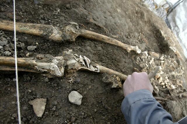 Ossements découverts sous le parvis de la basilique... (Photo: archives La Presse)