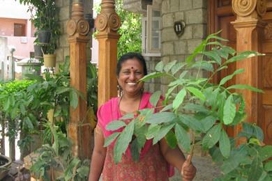 À Bangalore, les arbres tombent au rythme de... (Photo: Philippe Mercure, La Presse)