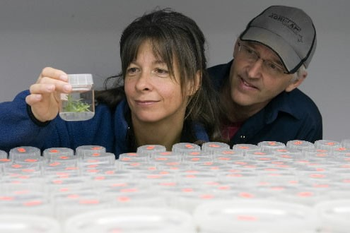 Martine Girard et Jean Gaudreault travaillent à la... (Photo: André Tremblay, La Presse)