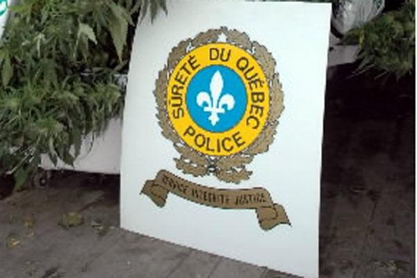 Les policiers de la Sûreté du Québec ont bouclé leur journée d'éradication du... (Archives La Presse)