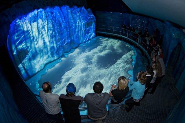 La Station d'exploration glaciaire de Baie-Comeau, partie intégrante... (Photo fournie par le Jardin des glaciers)