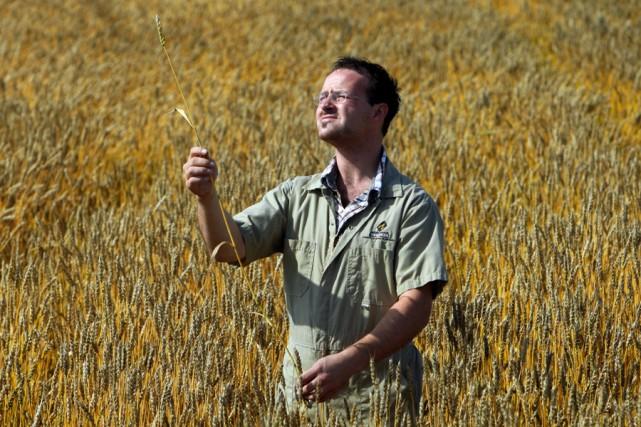 Travis Hagen, meunier en chef aux Moulins de... (Photo: Martin Chamberland, La Presse)