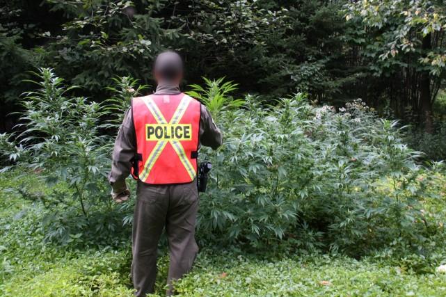 Les policiers du poste de la Sûreté du... (photo Alain Dion)