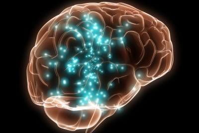 La moralité est liée aux émotions ressenties, dans le cerveau, montrent les... (Photo: Photothèque La Presse)