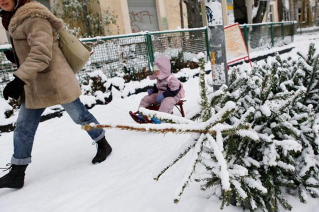 Les sapins doivent être déposés en bordure de... (Photo: AFP)
