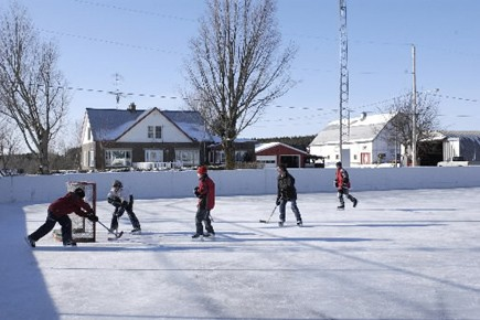 Plusieurs groupes environnementaux ont joué au hockey ce matin à la patinoire... (Archives La Presse)