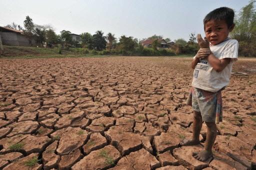 Une rizière desséchée le long du Mékong.... (Photo: AFP)
