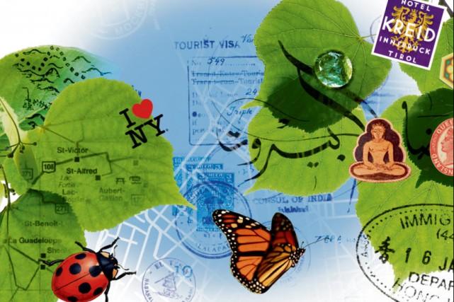 Le tourisme responsable a le vent en poupe. Ses principes fondamentaux: avoir... (Illustrations: Philippe Tardif, La Presse)