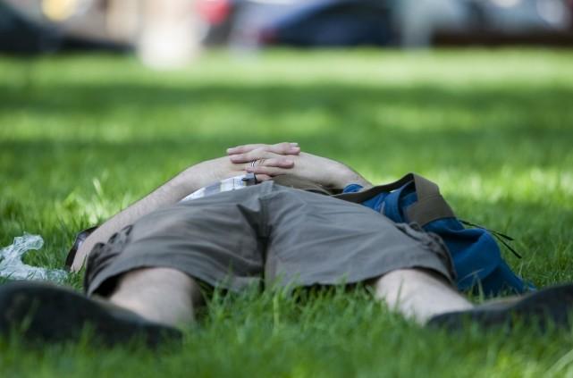 Les espaces verts urbains réduisent la température et... (PHOTO: FRANÇOIS ROY, ARCHIVES LA PRESSE)