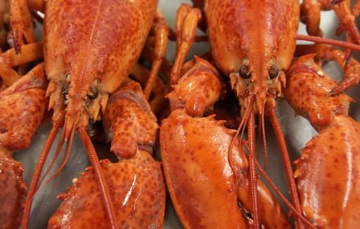 L'an dernier, les recettes du souper annuel de homard au profit de la Cuisine... (Archives La Presse)